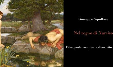 Nel regno di Narciso: un mito che si fa fragranza